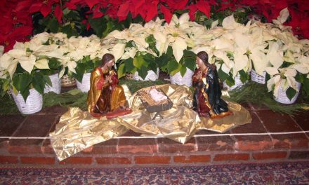 Christmas Greetings from Fr. Colin MacInnes